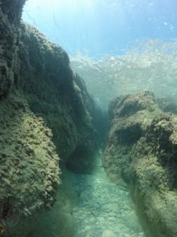 Playa La Caleta - Playa La Caleta - Vistas del fondo marino con formaciones rocosas. Inmersión practicando snorkel o buceo.