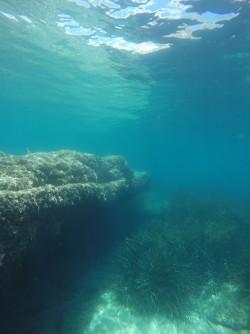 Snorkel Playa del Torres - Snorkel Playa del Torres - Plataforma de roca que crea una cueva, zona con posidona y fondo arenoso.