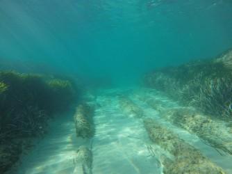 Snorkel playa del Charco - Snorkel playa del Charco - Bonita zona con fondo arenoso y placas de roca que sobresalen.