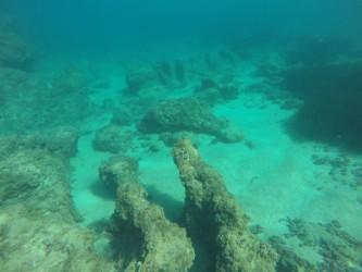 Cala de Dins - Cala de Dins - Fondo arenoso con formaciones rocosas y posidonea, parte profunda de la cala
