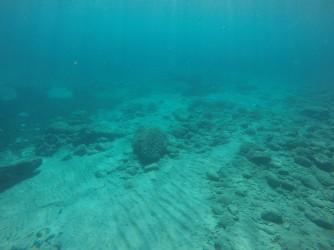 Snorkel en Cala de Dins - Snorkel en Cala de Dins - Fondo marino arenoso y con rocas, parte profunda de la cala.