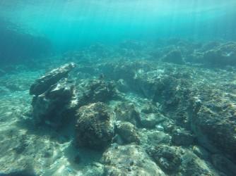 Snorkel en Cala de Dins - Snorkel en Cala de Dins - Fondo marino rocoso a poca profundidad.
