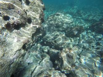 Snorkel en Cala de Dins - Snorkel en Cala de Dins - Fondo marino con formaciones rocosas