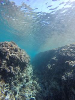 Snorkel en Cala de Dins - Snorkel en Cala de Dins - Fondo de lengua de roca con canal.