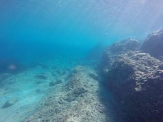 Snorkel en Cala de Dins - Snorkel en Cala de Dins - Fondo marino rocoso.