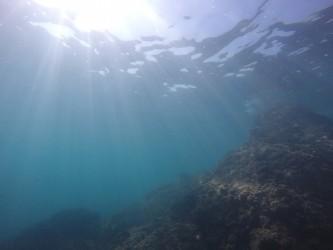 Racó del Corb - Racó del Corb - Fondo marino rocoso.