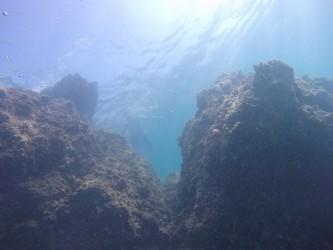 Racó del Corb - Racó del Corb - Fondo marino rocoso. Parte sur de la cala.