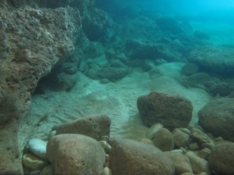 Cova del Llop Marí - Cova del Llop Marí - Rocas fondo de la cueva.