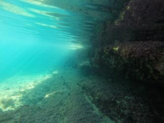 Snorkel en Illeta dels Banyets