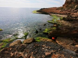 Cala de la Zorra - Cala de la Zorra - Plataforma rocosa con gente disfrutando del mar practicando snorkel.