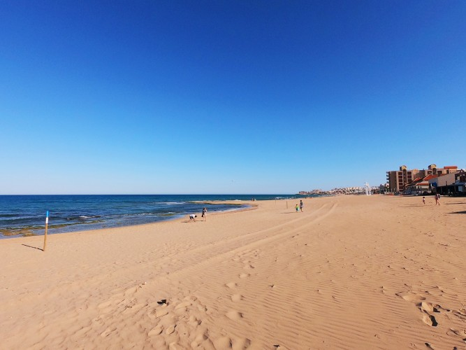 Playa De La Mata En Torrevieja Alicante 7 Mares