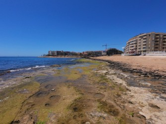 Playa de los Locos - Playa de los Locos - Zona al sur del espigón que divide la playa. Esta parte es rocosa en la primera línea de playa.