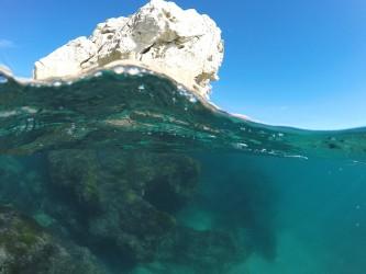 Cala Finestrat - Cala Finestrat - Vista fondo marino rocoso practicando snorkel o buceo. Benidorm - Alicante