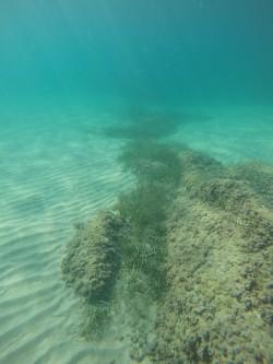 Playa del Torres - Playa del Torres - Fondo marino arenoso, con formación de roca