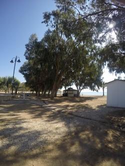 Chiringuito El Torres - Chiringuito El Torres - Chiringuito de la Playa el Torres
