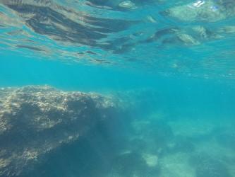 Playa del Torres - Playa del Torres - Fondo marino con formación rocosa