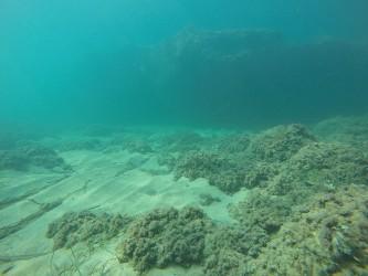 Playa del Torres - Playa del Torres - Fondo marino rocoso con algas y formación rocosa