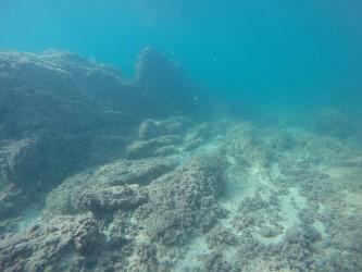 Playa del Torres - Playa del Torres - Fondo marino rocoso