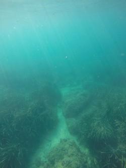 Playa del Torres - Playa del Torres - Fondo marino con posidonia y rocas