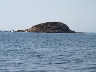 Illa de l'Olla - Illa de l'Olla - Vistes des de la platja de la Illa de l'Olla
