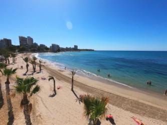 Playa de la Albufereta - Playa de la Albufereta - Vista panorámica de la playa.