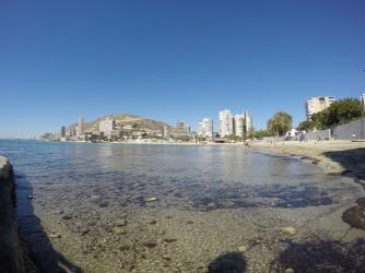 Playa de la Albufereta - Playa de la Albufereta - Vista desde el final de la playa, en el extremo más al este. Agua cristalina, Serra Grossa al fondo.