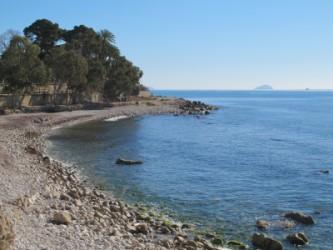 Playa Puntes del Moro - Playa Puntes del Moro - Vista panorámica. Zona playa norte con eucaliptos y Isla de Benidorm al fondo.