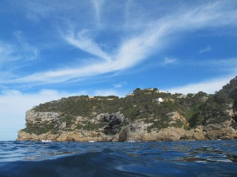Cap Negre - Cap Negre - Detall del Cap Negre amb penya-segats i bosc de pins i arbustos.