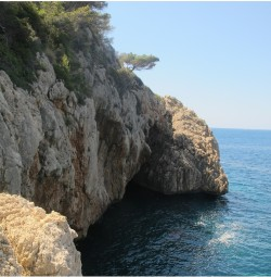 Cueva del Llop Marí : Alicante > Jávea