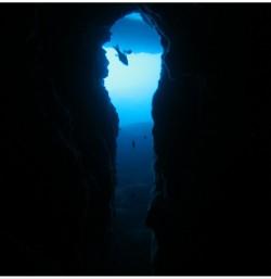 Cueva del Llop Marí : Alacant > Xàbia