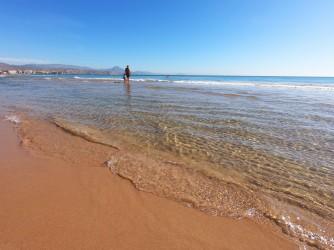 Playa de Muchavista - Playa de Muchavista - Detalle primera línea de playa.