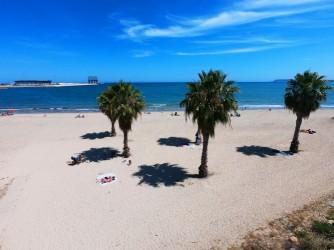 Playa de San Gabriel - Playa de San Gabriel - Las palmeras crean pequeños espacios con sombras.