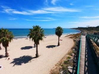 Playa de San Gabriel - Playa de San Gabriel - Palmeras y pasarela para sortear las vías del tren.