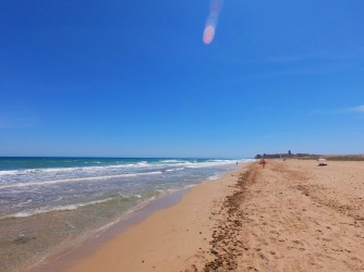 Playa del Altet : Alicante > Elche