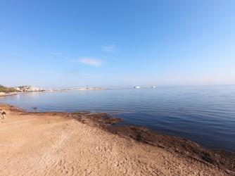 Playa Marineta Casiana - Playa Marineta Casiana - Zona sur de la playa. Con presencia de posidonia que nos indica la calidad de estas aguas.